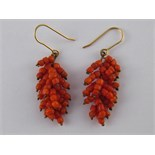 A pair of coral drop earrings with yellow metal (tests 18 carat gold) wire fittings, approx 4.