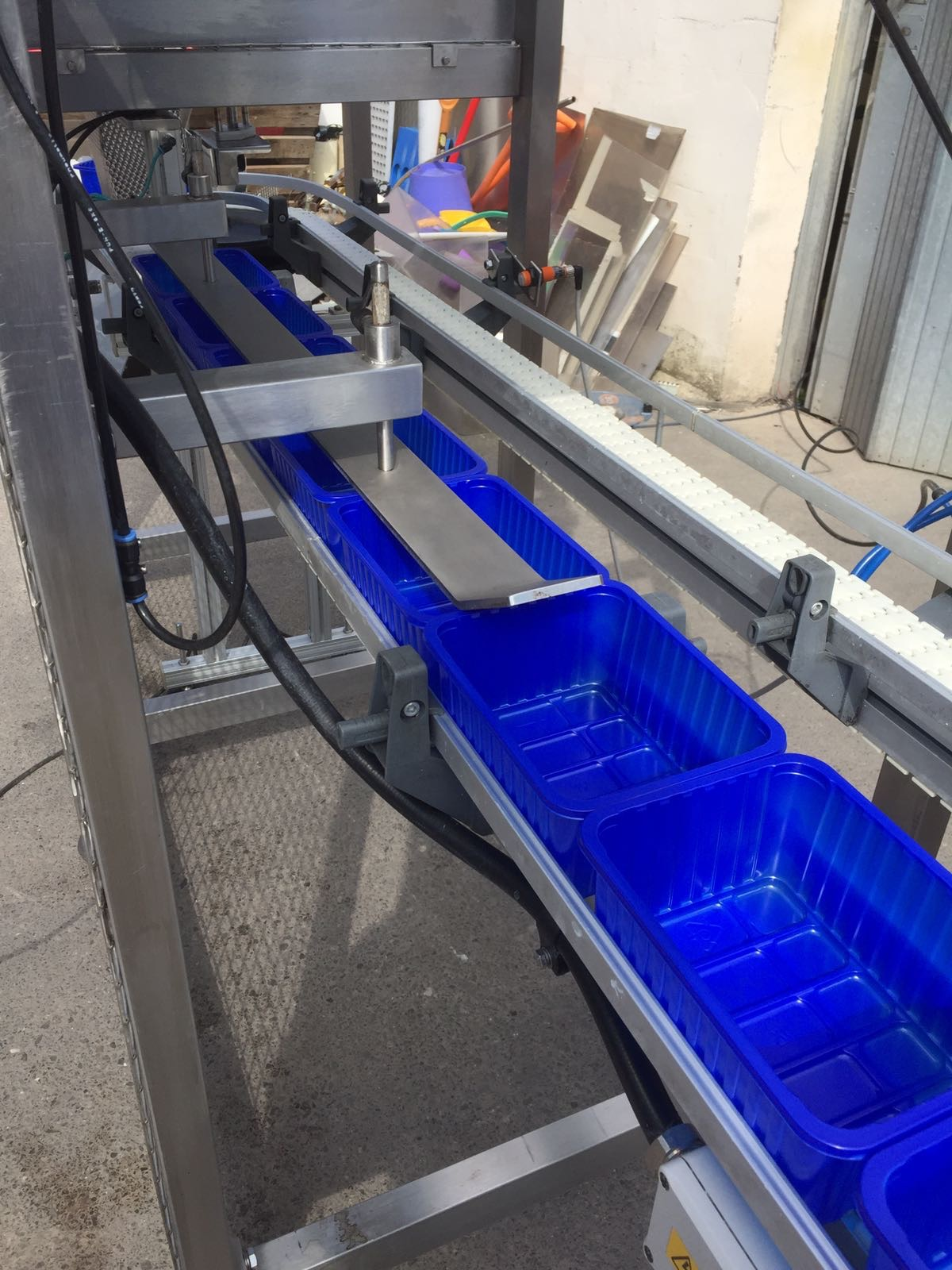 Lot 39 - Easy weigh Twin Linear weigher with conveyor for Auto filling into punnets touch screen control s/s