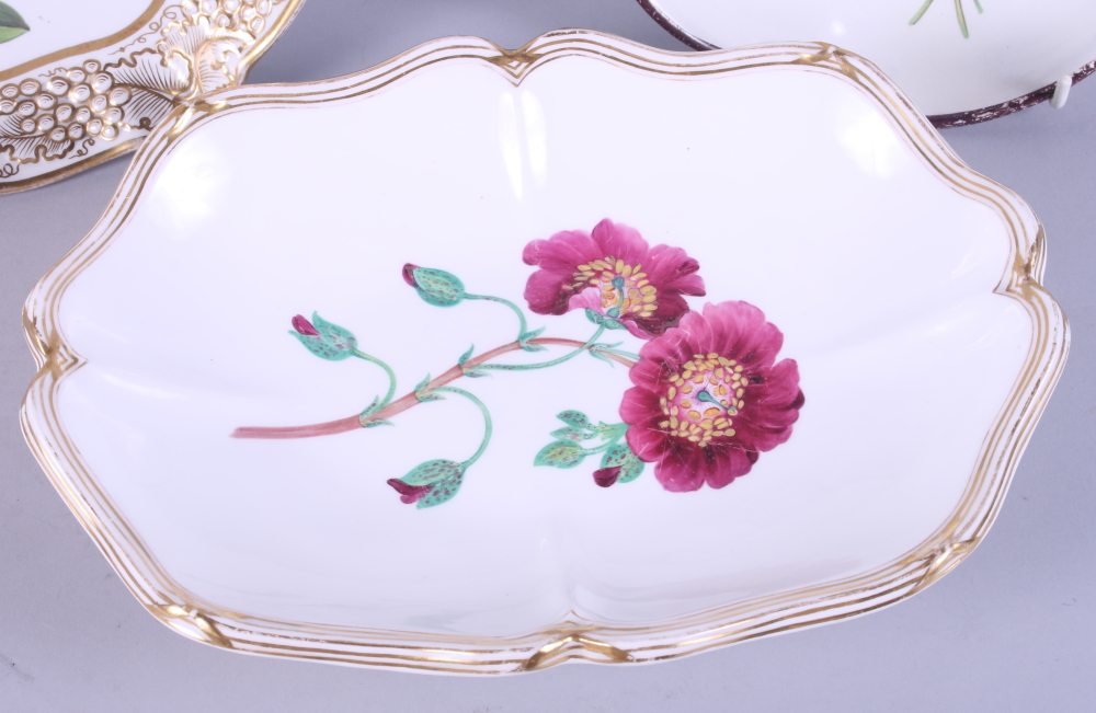 """Lot 12 - An early 19th century botanical decorated dessert dish with gilt grape border, 10"""" dia, and three"""