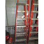 Louisville 6' Fiber Glass Ladder