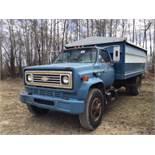 1981 Chev C-60 S/A Grain Truck w/16' Steel Box, scissor Hoist, Roll Tarp, SN 1GBL7D1BXBV117272