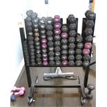 LOT - DUMBELLS WITH RACK (90 PIECES)