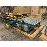 Kaufman Roller Conveyor with Cross Chain (Rigging Fee - $250)