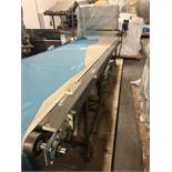 Conveyor with Duster (Rigging Fee- $300)