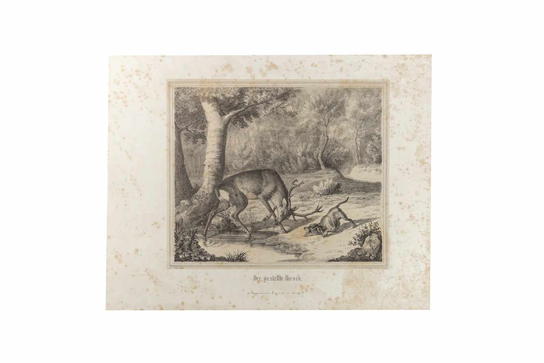 HAPPEL, FriedrichJagd-Scenen nach Original-Zeichnungen. Lithographiert von C. Diedrich. Arnsberg, C. - Image 3 of 4