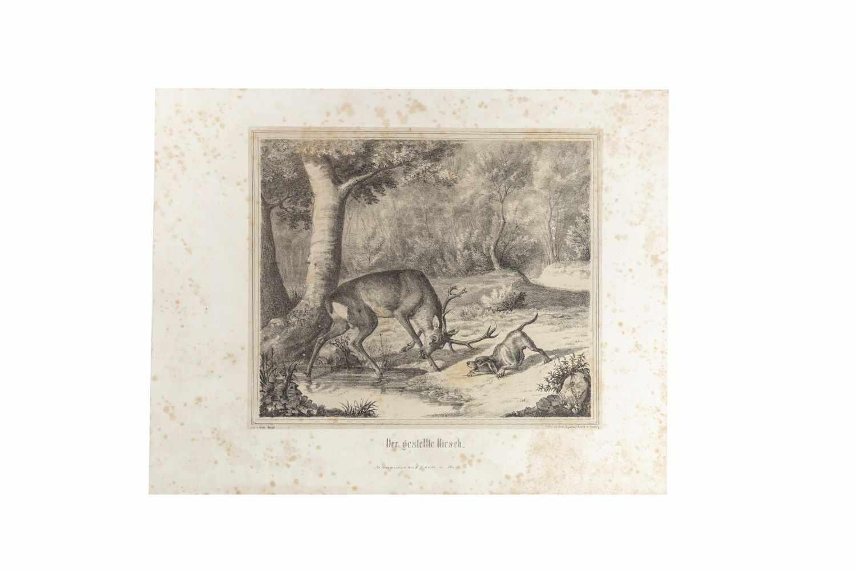 HAPPEL, FriedrichJagd-Scenen nach Original-Zeichnungen. Lithographiert von C. Diedrich. Arnsberg, C. - Image 2 of 4