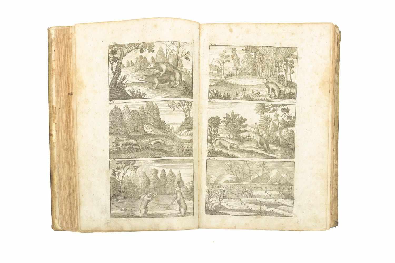 TANTZER, Johann Der Dianen Hohe und Niedere Jagd-Geheimnisse, Darinnen die gantze Jagd- - Image 4 of 5
