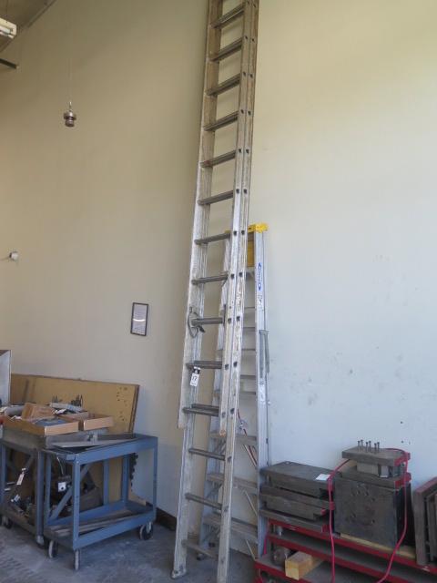 Lot 17 - Ladders