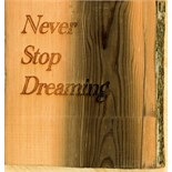 Lot 1I - Artist: Kelsi Chamberlain (Helston Community College) Title: Never Stop Dreaming Size: 25