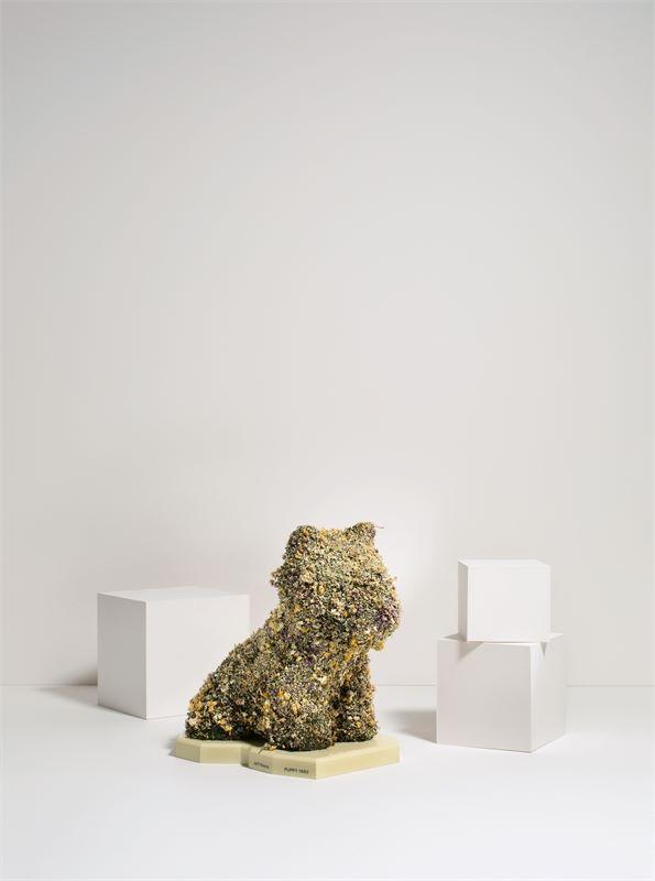 Los 333 - Jeff Koons (York, Pennsylvania 1955 – lebt in New York)Floral Puppy. 1992Getrocknete Blumen;