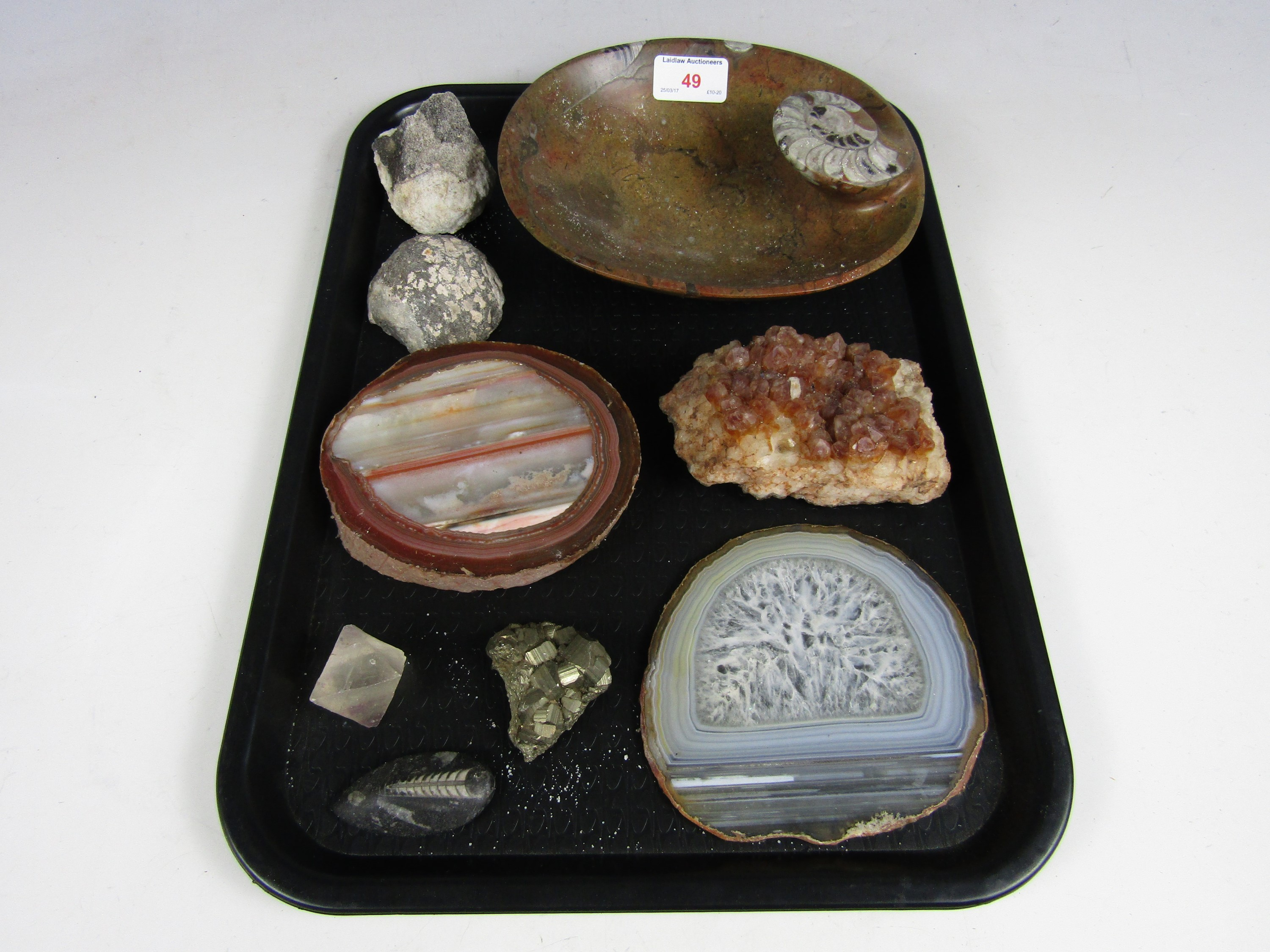 Lot 49 - An ammonite dish together with other fossils and gems etc
