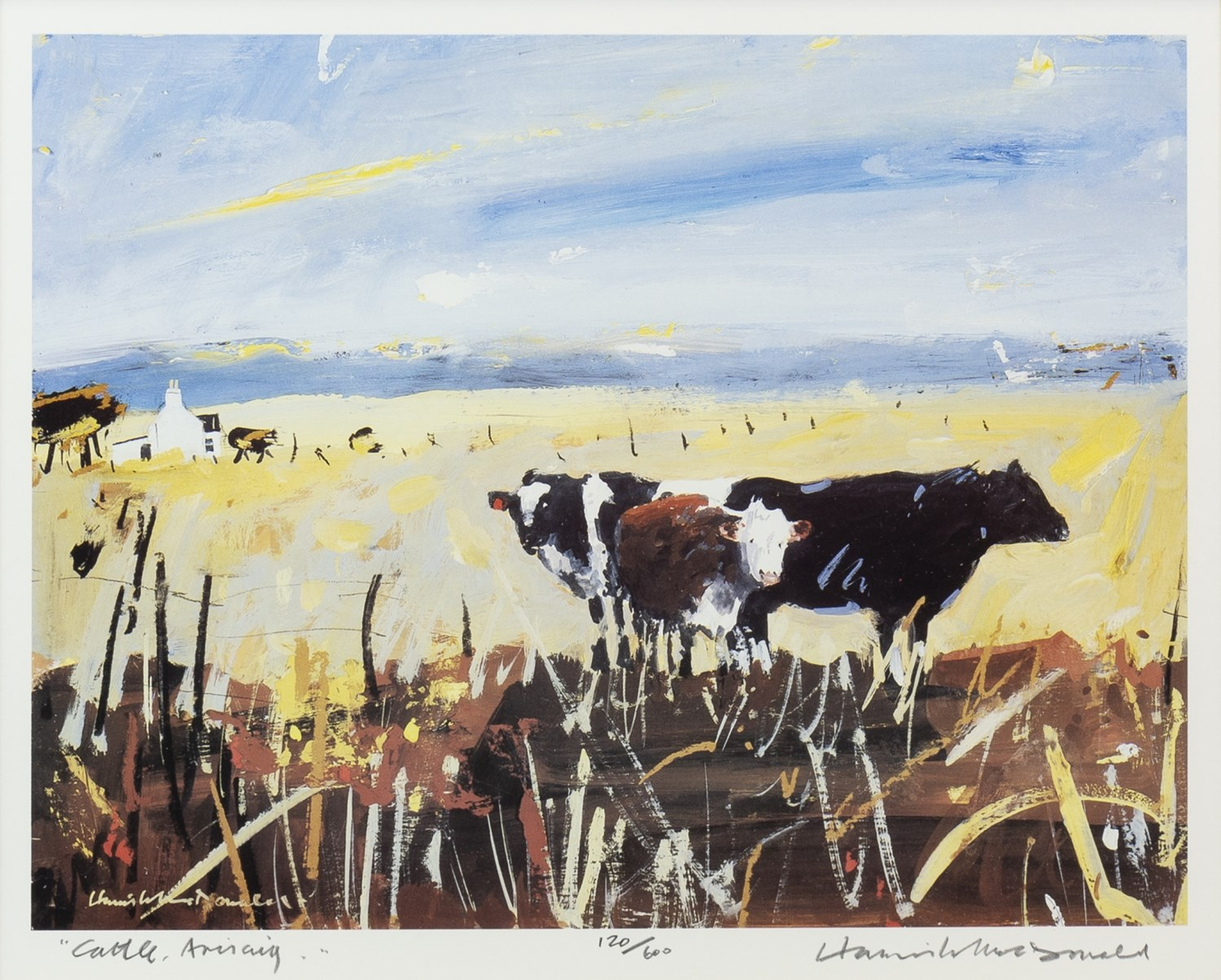 Lot 52 - CATTLE, ARISAIG, A LIMITED EDITION LITHOGRAPHIC PRINT BY HAMISH MACDONALD