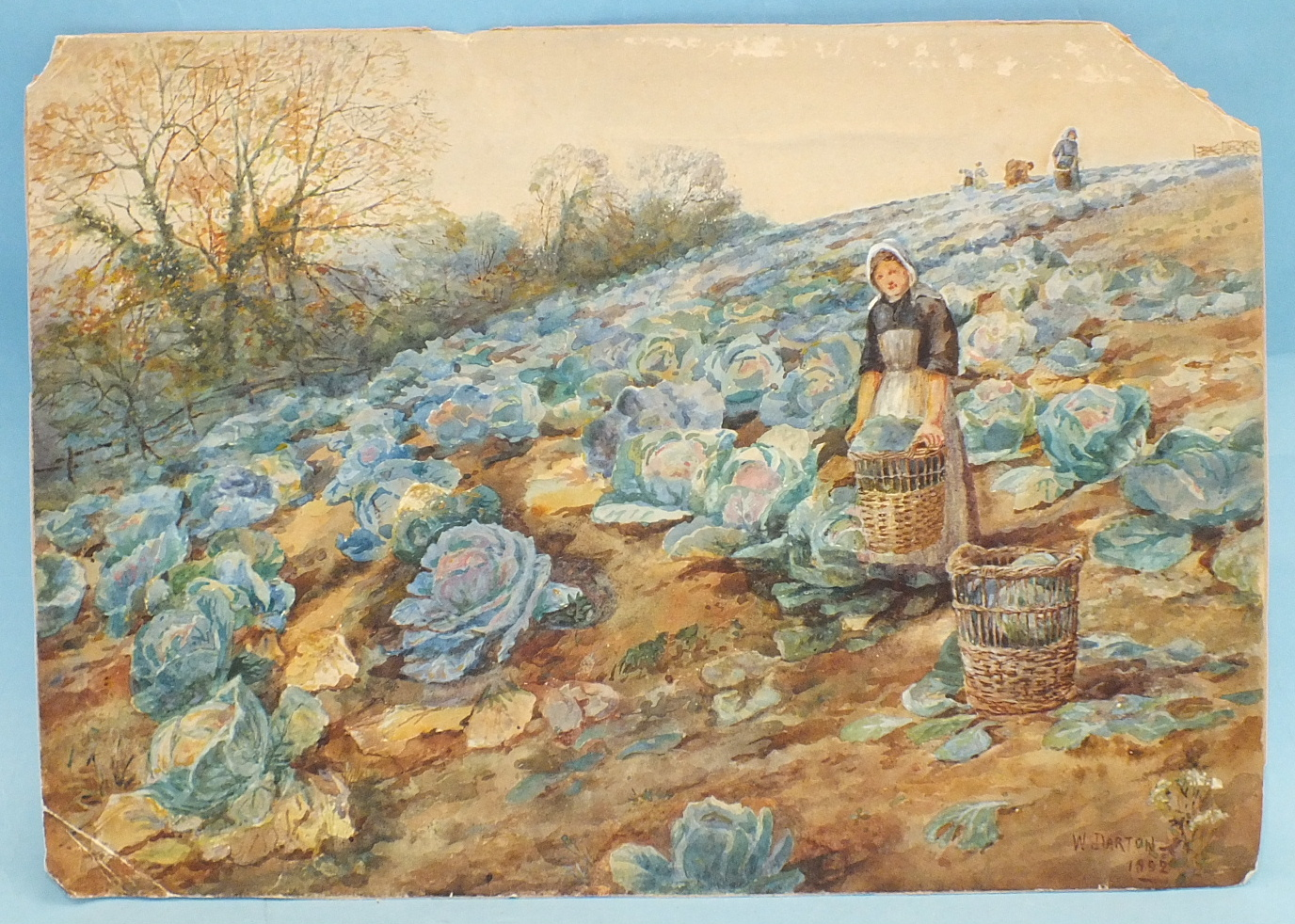 W Darton WOMEN GATHERING CABBAGES IN A FIELD Signed watercolour, dated 1892, unframed, damage to