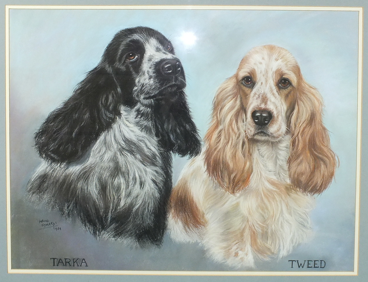 """•Pauline Edwards """"TEAL, SHOUTER, AMBER"""", PORTRAIT OF THREE COCKER SPANIELS Signed pastel, dated - Image 2 of 2"""