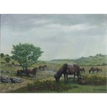 •DARTMOOR, PONIES GRAZING Signed oil on canvas, 59.5 x 80cm, titled Tavistock Group of Artists label