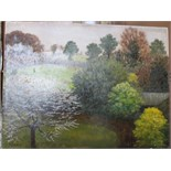 •A collection of fourteen unsigned and signed unframed landscape oil paintings on board, including