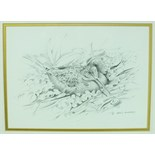 •Robin Armstrong (20th century) WOODCOCK Signed pencil drawing, 21 x 28cm and another PHEASANT, 19 x