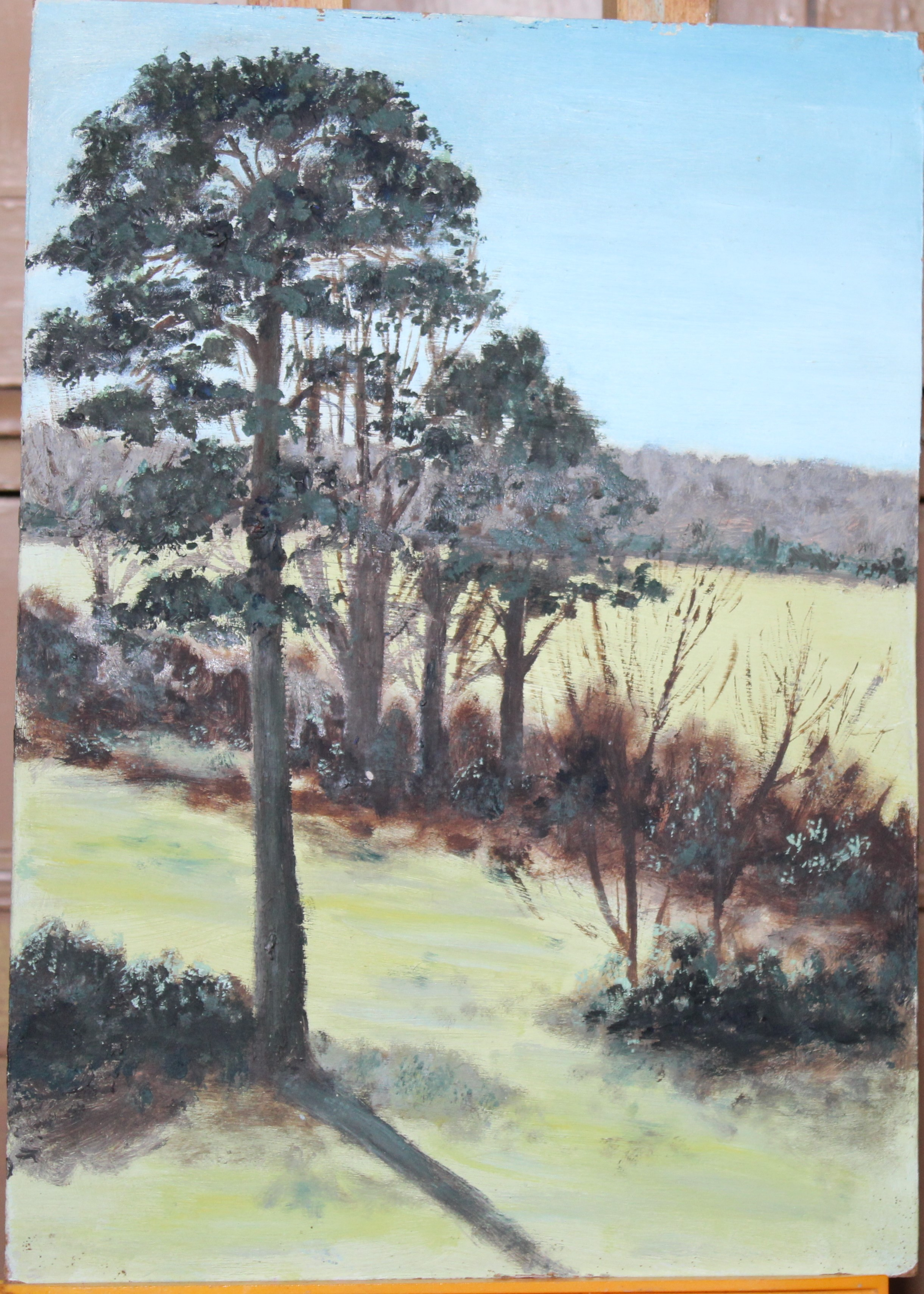•A collection of fourteen unsigned and signed unframed landscape oil paintings on board, including - Image 3 of 11