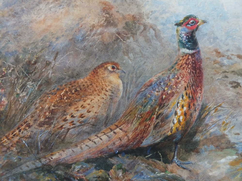 Lot 89 - JAMES STINTON (1870-1961). An oval woodland scene with male and female pheasant by a rocky stream,