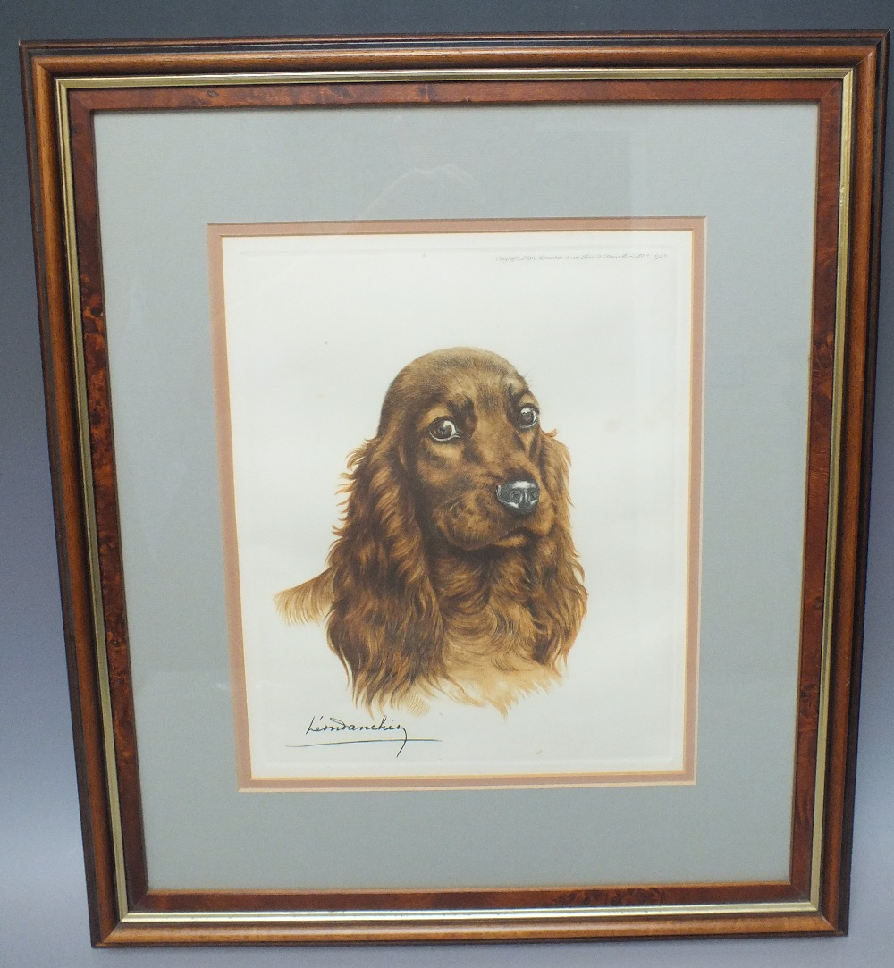 Lot 23 - LEON DANCHIN (1887-1939). French school, study of a spaniel, signed in plate, lower left, coloured