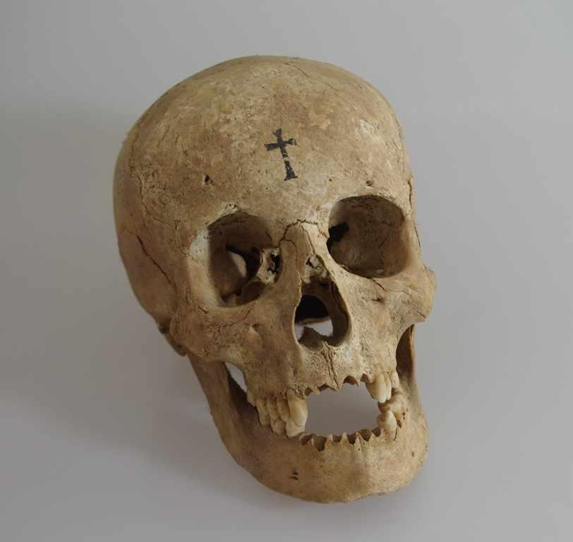 Menschlicher Schädel mit Unterkiefer, wohl 17./18.Jh., auf dem ...
