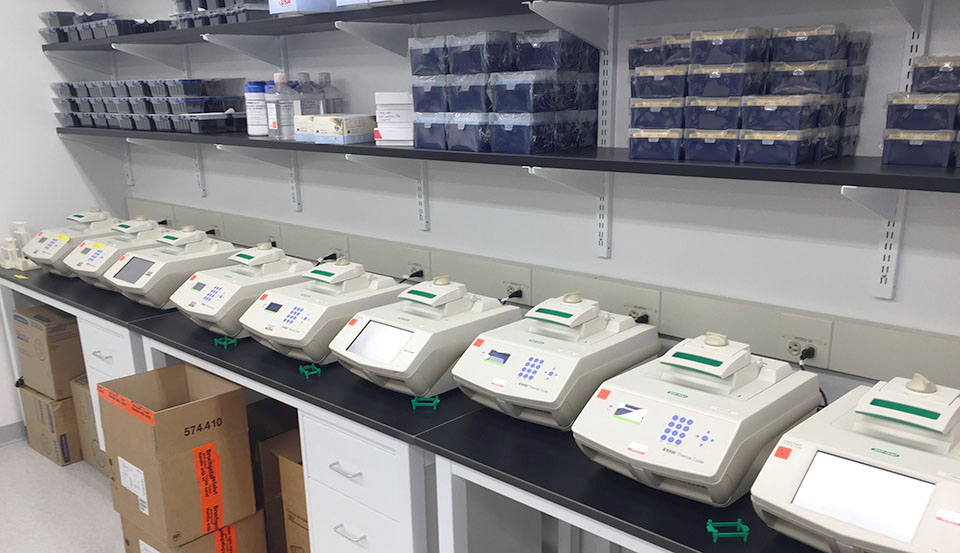 Lot 0 - Enumeral Biomedical Auction