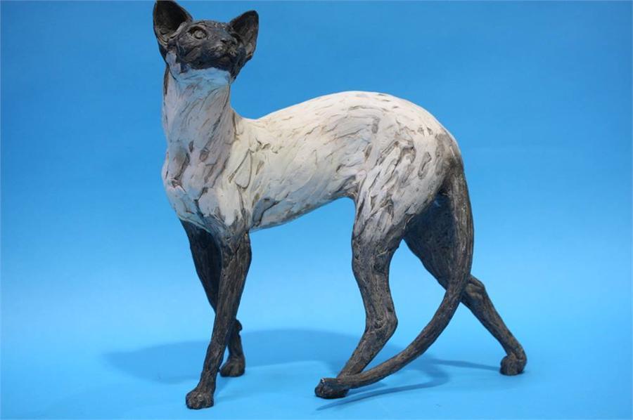 Lot 64 - A Siamese cat