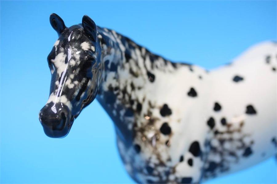 Lot 36 - A Beswick 'Appaloosa' horse number 1771