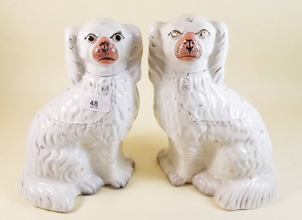 Lot 48 - A pair of Victorian Staffordshire dogs 24cm