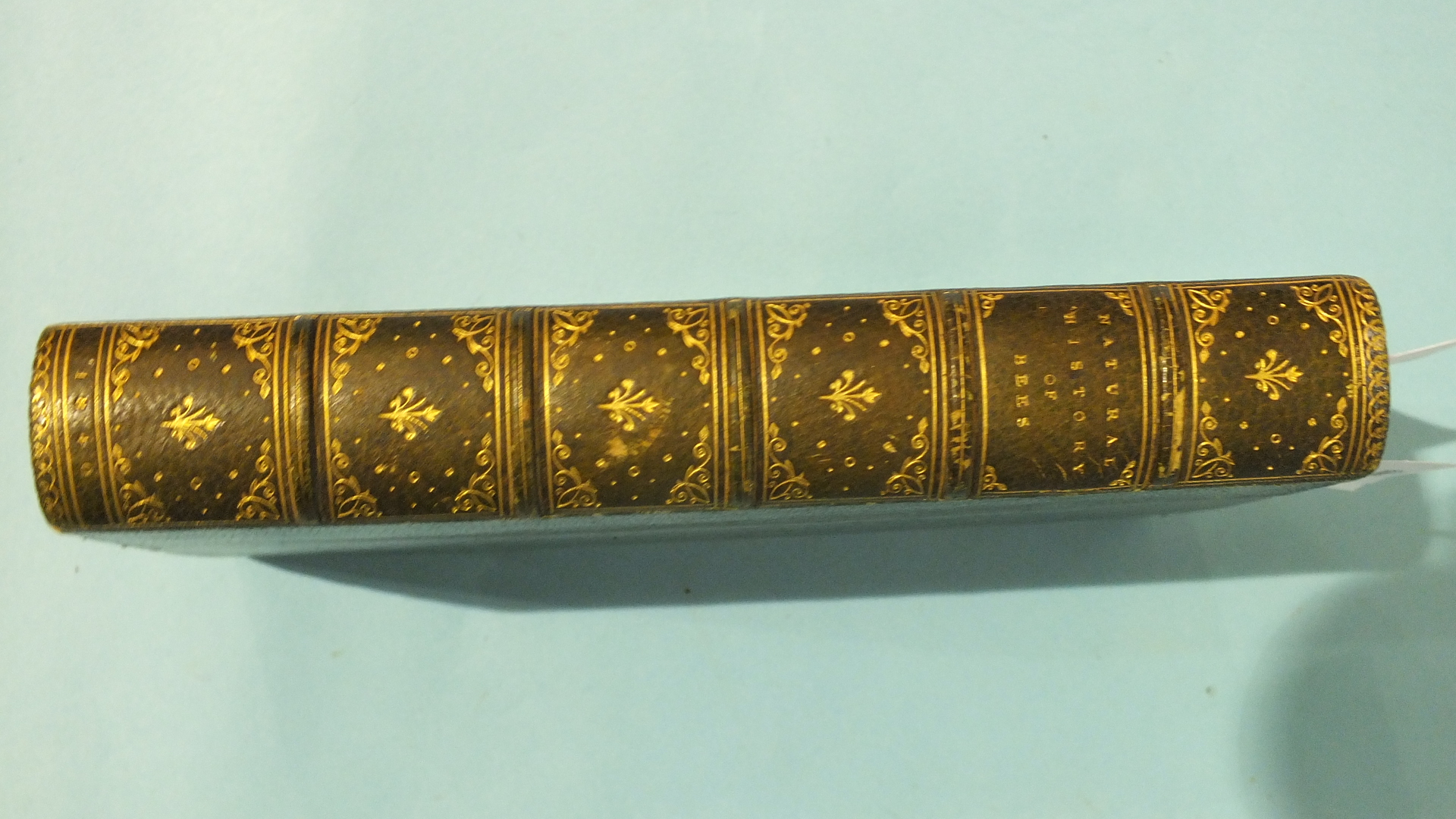 Lot 23 - Jardine (Sir William), Entomology - Bees, Vol VI The Naturalist's Library, part frontis, hd col tp