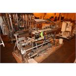 """Dual S/S Check Weigher, Conveyor Aprox. 28"""" L x 8"""", Mounted on S/S Frame (LOCATED IN BROCKPORT,"""