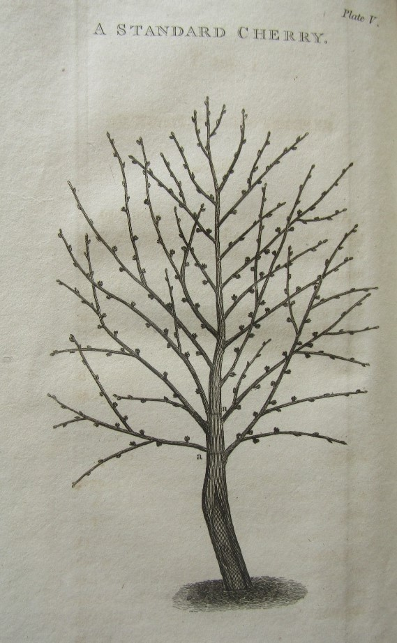 Lot 856 - FORSYTH William - A Treatise on the Culture and Management of Fruit Trees 4th Edition, printed for