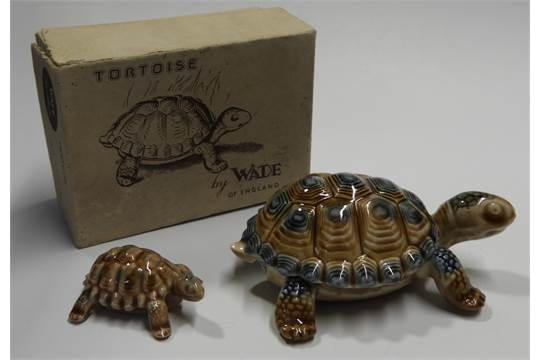Wade Tortoise Trinket Box Small Tortoise Box