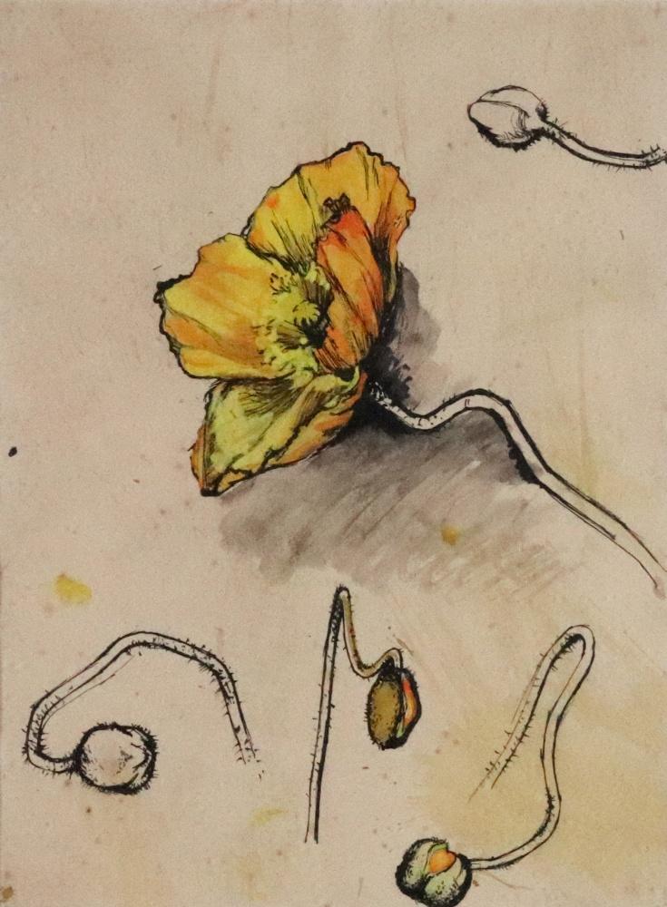 Avril Blanshard (British, 20th Century), - Image 5 of 8