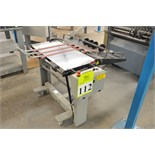 Stahl Model 1430A-RS Delivery Table; Serial Number: 161K0004