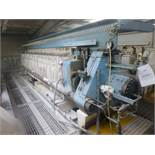 William Boulton Type No 3 filter press, serial No FS-7684 (1974), Plant No SHP VIT PRESS 2 overall