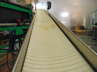 "S.S. Product Belt Conveyor, 12""W x 20'L - Image 2 of 2"