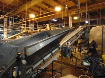 "S.S. Product Belt Incline Conveyor, 18""W x 12'L"