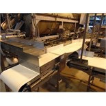 "S.S. Product Distribution Conveyor, 18""W x 10'L"
