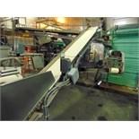 "S.S. Product Belt Incline Conveyor, 18""W x 10'L"