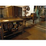 Can Washer Conveyor w/ Hyd. Retort Basket