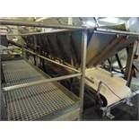 S.S. Product Belt Conveyor w/ Receiving Hopper