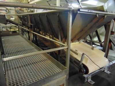 Lot 601 - S.S. Product Belt Conveyor w/ Receiving Hopper
