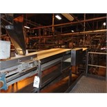 "S.S. Product Belt Incline Conveyor, 24""W x 16'L"