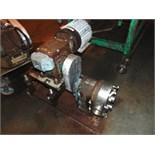 Waukesha mod. 130, 5hp S.S. Lobe Pump