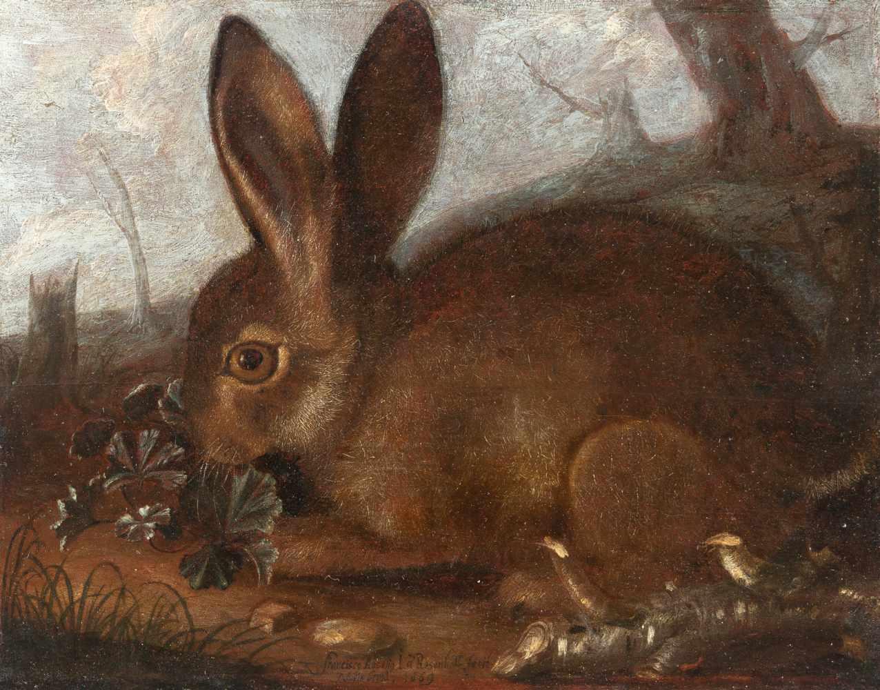 Franz Rösel Von Rosenhof1626 Vienna - Nuremberg 1700Kleiner Hase, an einem Klee knabberndÖl auf