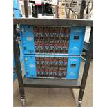 LOT - (2) CONTROL KING 14 HOT RUNNER UNITS ON CART, (14) 2010 MODULES IN EACH