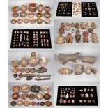 Große präkolumbische Sammlung El Salvador<b