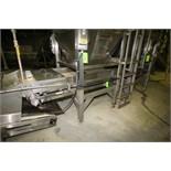 "~14 ft. 9"" L S/S Belt Conveyor System, with 33"" Belt, Bryant Electric Drive Roller, Side Rails, ("