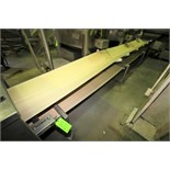"""23 ft. S/S Belt Conveyor System with 24"""" W Belt, Electric Drive, 26"""" H S/S Leg Supports"""